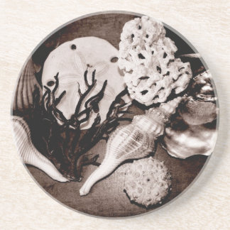 Sepia Seashells Coasters