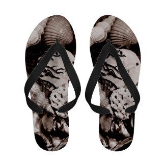 Sepia Seashells Sandals