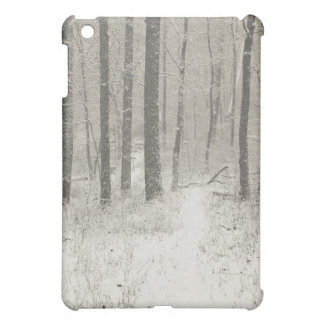 Sepia Snow Scene iPad Mini Covers