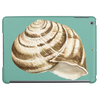 Sepia Striped Shell on Teal