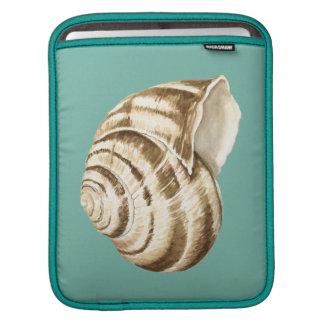 Sepia Striped Shell on Teal iPad Sleeve