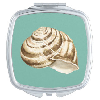 Sepia Striped Shell on Teal Makeup Mirror