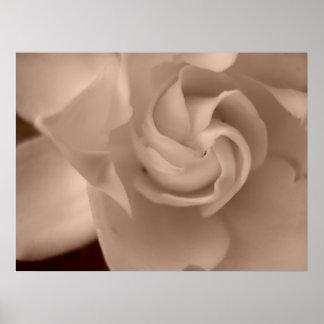 """""""Sepia Tone Gardenia"""" Poster"""