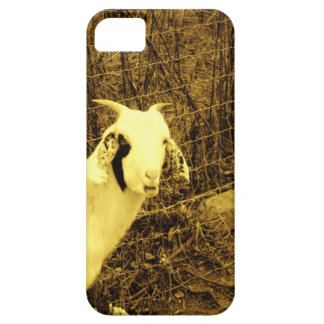 Sepia tone Goat Case For iPhone 5/5S