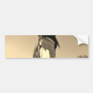 Sepia Tone Horse Bumper Sticker