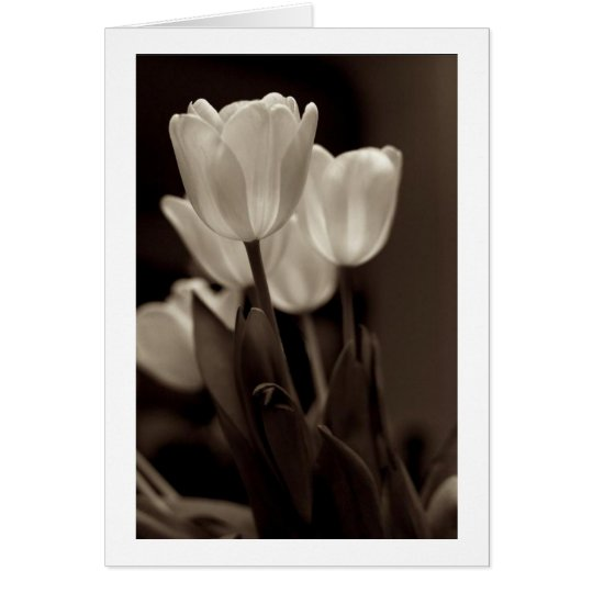 Sepia Tulip Note Card