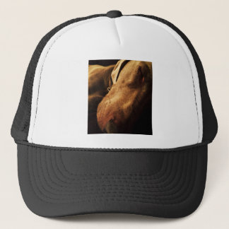 Sepia Weimaraner Trucker Hat
