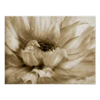 Sepia White & Cream Dahlia Background Customized Poster