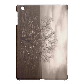 Sepia winter scene case for the iPad mini