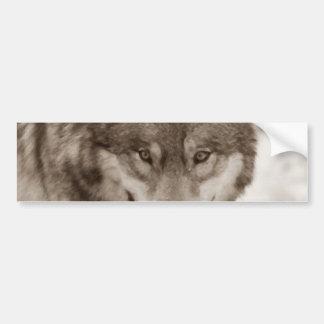 Sepia Wolf Bumper Sticker