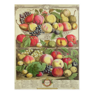 September, from 'Twelve Months of Fruits' Postcard