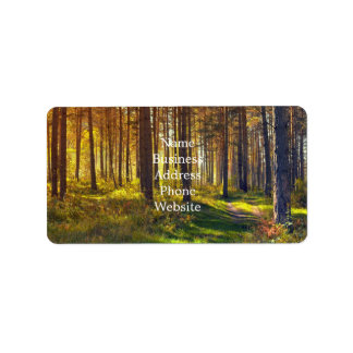 September in the forest.Sunrise in autumn forest Address Label
