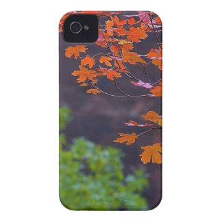 SEPTEMBER PICTURES Case-Mate iPhone 4 CASES