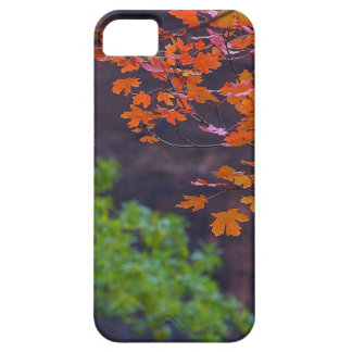 SEPTEMBER PICTURES CASE FOR THE iPhone 5