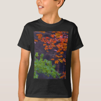 SEPTEMBER PICTURES T-Shirt