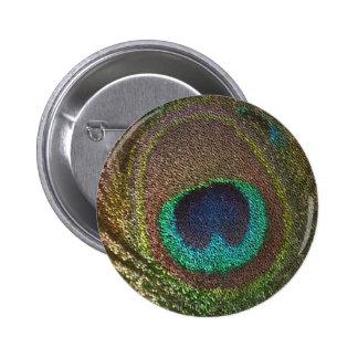 sequin design peacocks feather 6 cm round badge