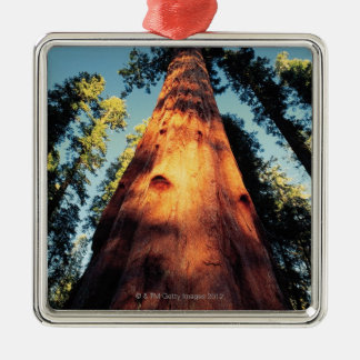 Sequoia National Park , California 3 Christmas Ornament