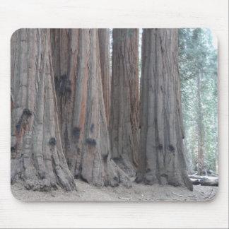 Sequoia National Park Mouse Mat