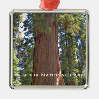 Sequoia National Park Silver-Colored Square Decoration