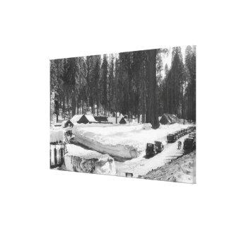 Sequoia National Park Snow Scene in Village Canvas Print