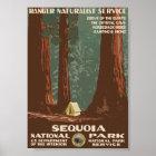 Sequoia National Park Vintage Travel Poster