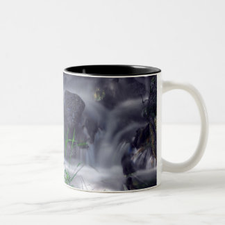 Sequoia Stream Mug