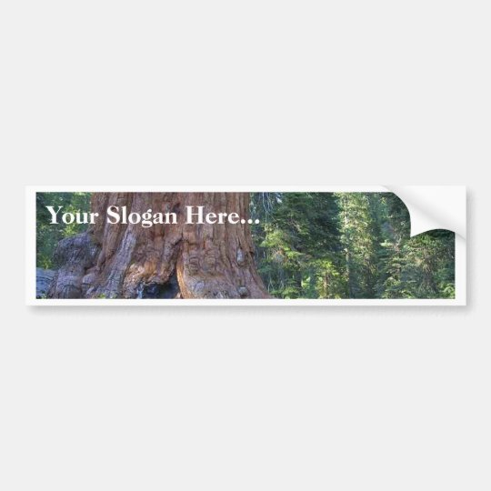 Sequoias Forrests Bark Fences Bumper Sticker