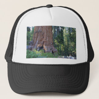 Sequoias Forrests Bark Fences Trucker Hat