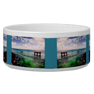 Serene Lagoon Dog Food Bowls