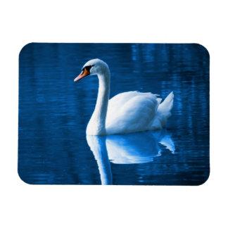 Serene Swan Rectangle Magnets