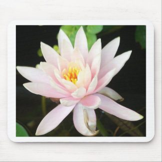 Serene Water Lilly Mouse Pad