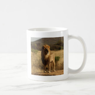 Serengeti Lion Basic White Mug