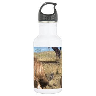 Serengeti Lions 532 Ml Water Bottle