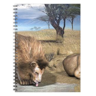 Serengeti Lions Spiral Note Book
