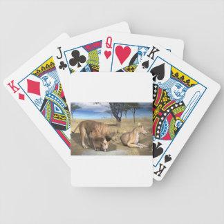 Serengeti Lions Bicycle Poker Cards
