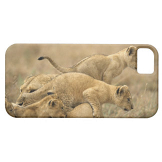Serengeti National Park, Tanzania 2 Barely There iPhone 5 Case