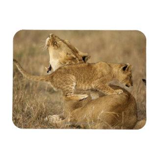 Serengeti National Park, Tanzania Rectangular Photo Magnet