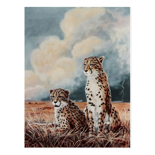 Serengeti Strikes Postcard