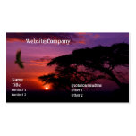 Serengeti Sunset Double-Sided Standard Business Cards (Pack Of 100)