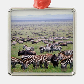 Serengetti Plains full of herds of Zebras and Christmas Ornament