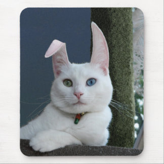 Serenity as Bunny mousepad