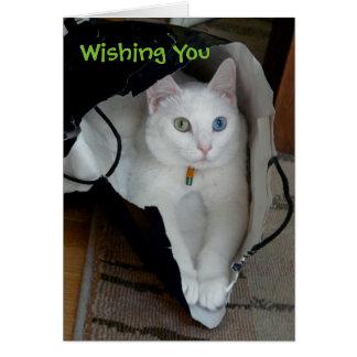 Serenity bagged holiday card