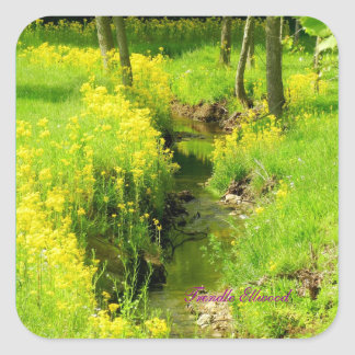 Serenity Creek Stickers