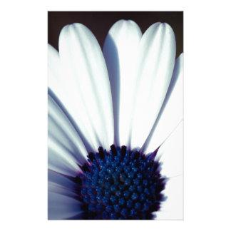 Serenity Osteospermum Stationery Paper
