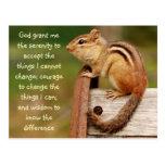 Serenity Prayer Chipmunk Postcard