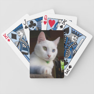 Serenity s poker-face playing cards