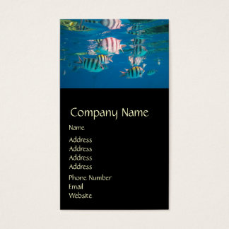 Sergeant Major Fish Business Card