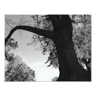 "Series- Local Park 4.25"" X 5.5"" Invitation Card"