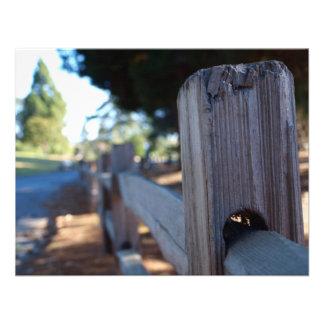 Series- Local Park Custom Invites