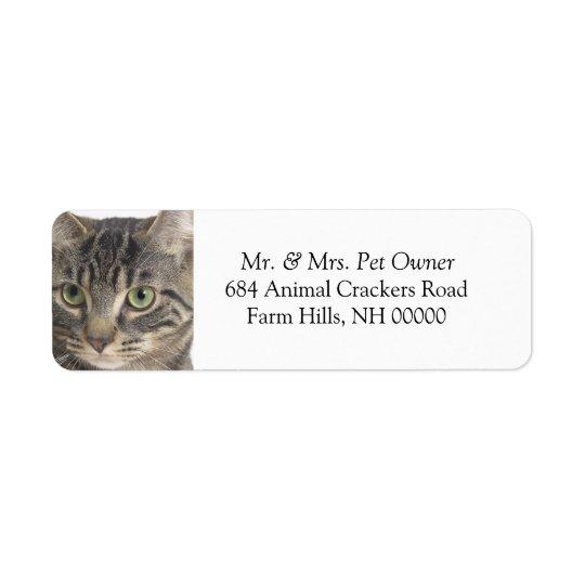 Serious Cat Close Up Return Address Labels Sticker
